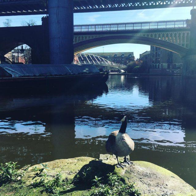 In Manchester running my Mindfulness Based Inner RePatterning training hellip