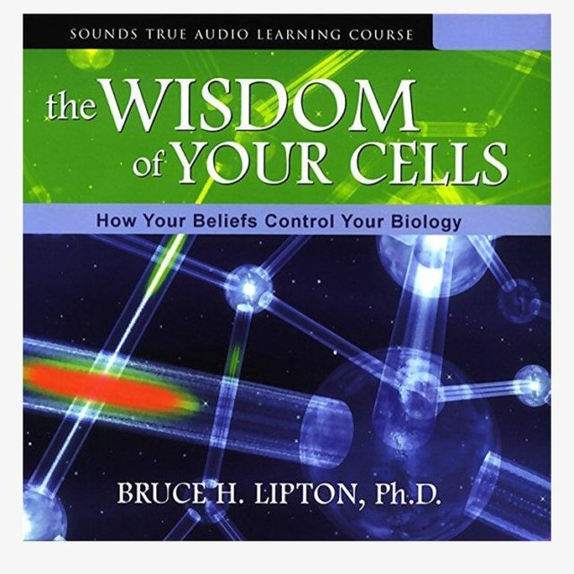 Listening to this audiobook again  brilliant  Bruce Liptonhellip
